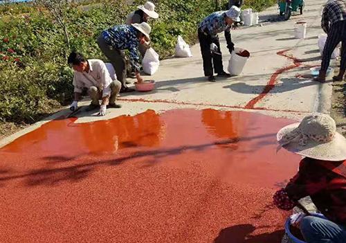 彩色沥青刮涂施工